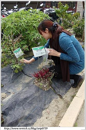 【台南】養生沐浴球&藥布拓印DIY @魚樂分享誌