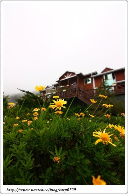 【南投清境】陽光花園山莊 @魚樂分享誌