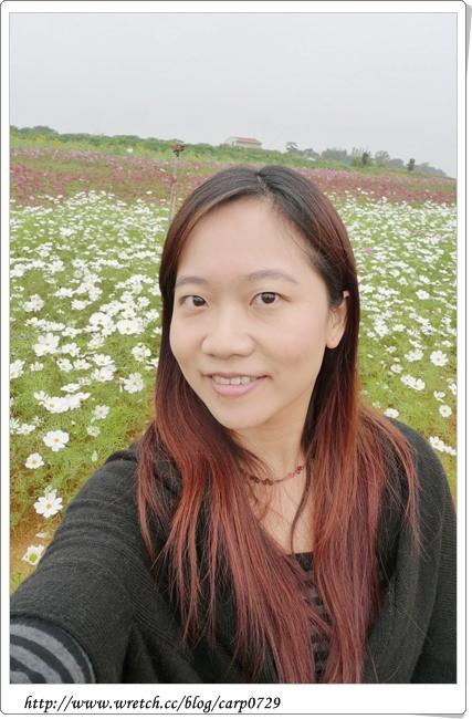 2011南投花卉嘉年華 @魚樂分享誌