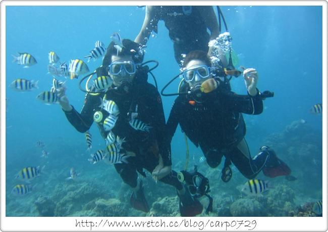 【菲律賓長灘島】潛水初體驗~我看到紅色尼莫了!! @魚樂分享誌