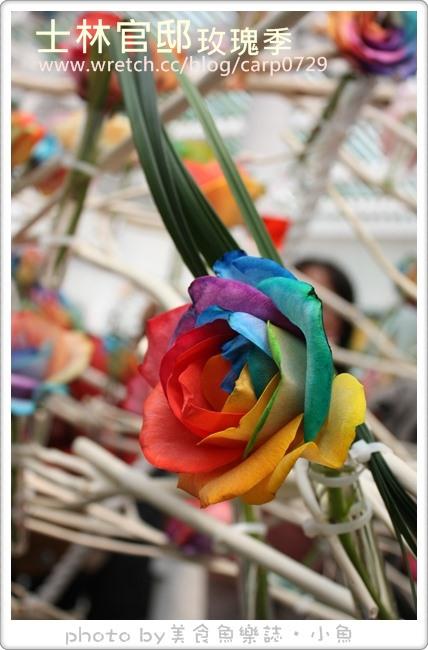 【台北士林】2013士林官邸玫瑰季~彩虹玫瑰首亮相 @魚樂分享誌