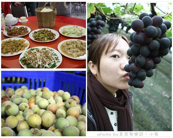 【活動】周末希望廣場~採買新鮮水果農產免出城!! @魚樂分享誌
