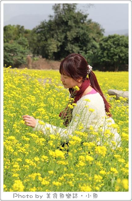 【台東】看見農遊新樂園~夢幻油菜花田拔蘿蔔,採草莓 @魚樂分享誌