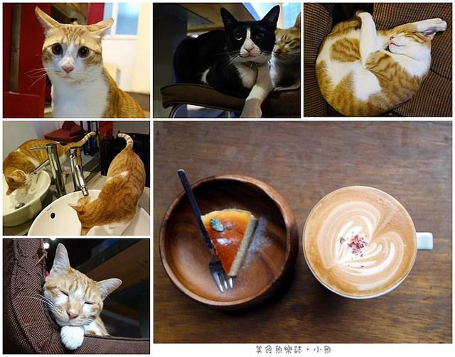 【新北板橋】猜咖啡 Guess What/貓奴必去/近新埔站 @魚樂分享誌