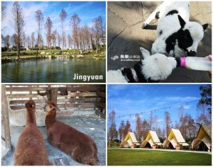 今日熱門文章:【高雄小港】淨園農場Jingyuan|機場咖啡館|療癒小動物 露營烤肉放風好去處